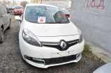 Renault Scenic. БЕЛЫЙ ЛЕД (369)
